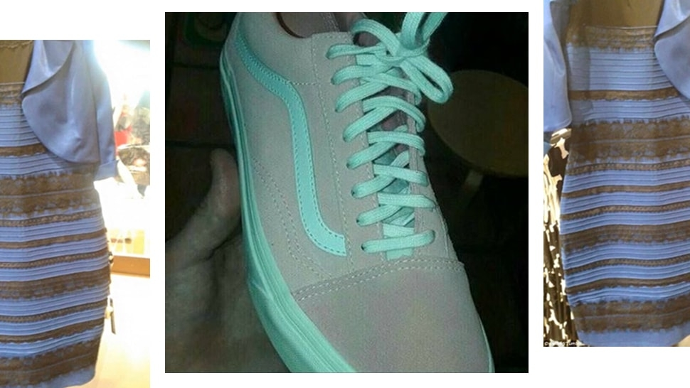 Fight Your Friends About What Color This Vans Old Skool Is  090e9a2c3