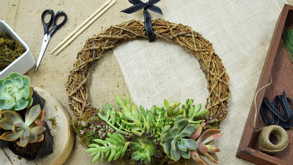 Diy Succulent Wreath For Christmas