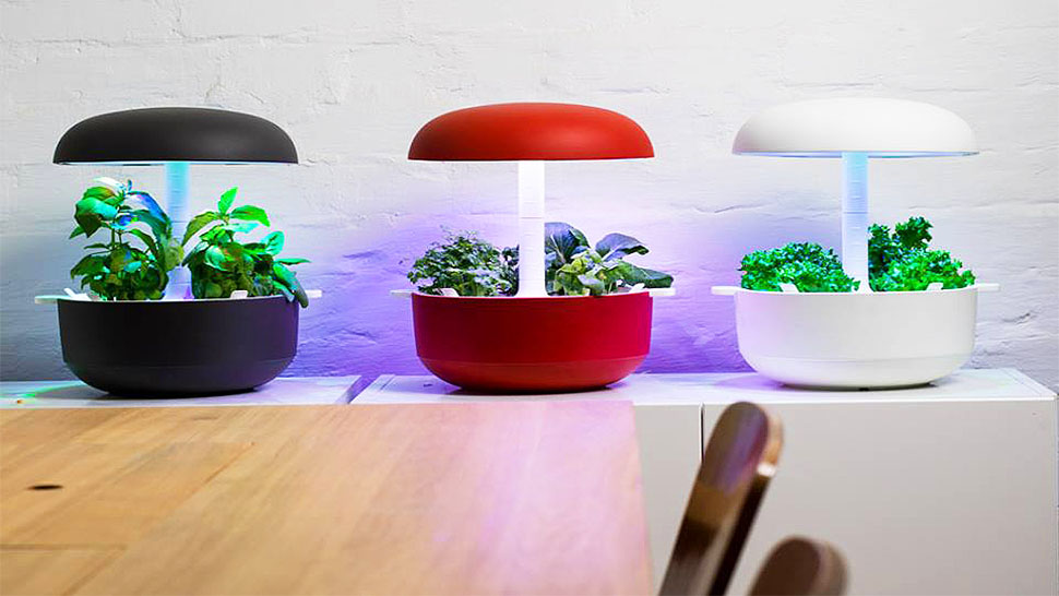 This Tiny Planter Can Grow A Vegetable Garden In A Small Home