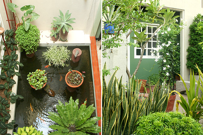5 Small Space Gardening Tips Rl