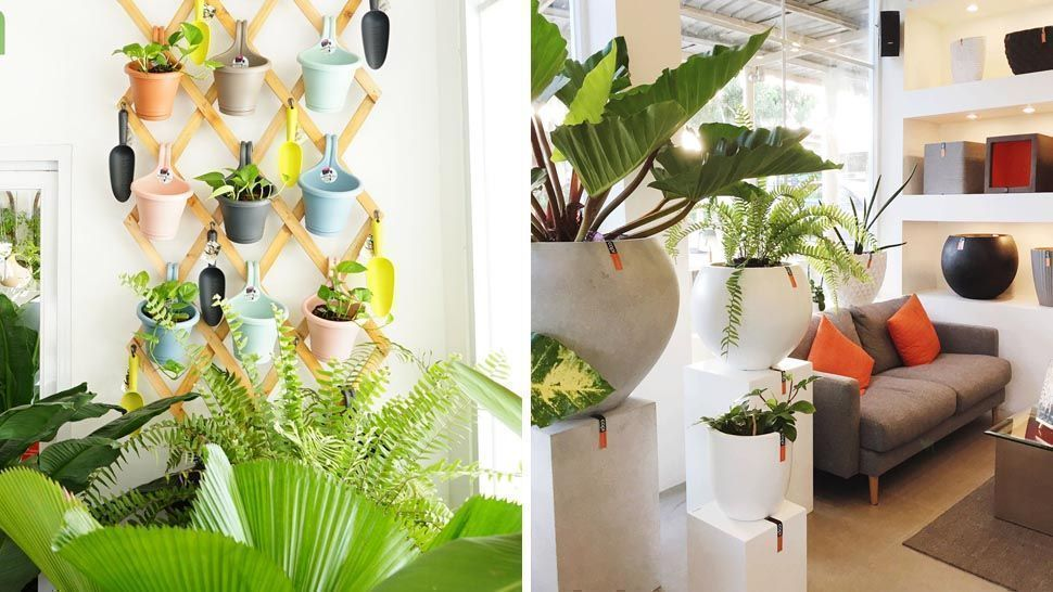 This New Garden Store In Laguna Shows Us Modern Ways With Plants