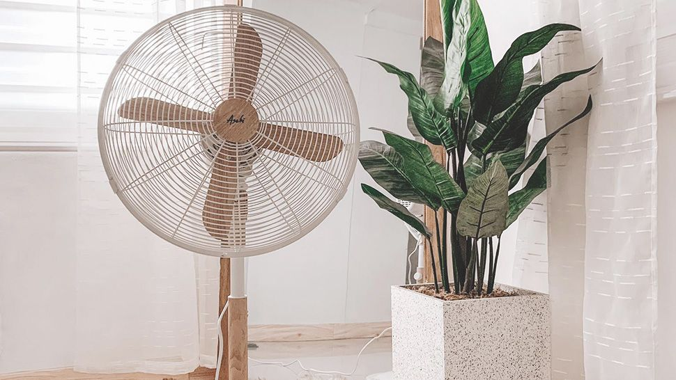 Asahi Aesthetic Electric Fan With Wooden Accent