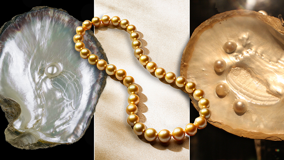 df2d089d9 Everything You Need to Know About Pearls