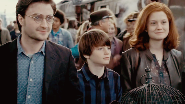 Meet the Potters 19 Years Later