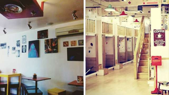 5 Places to Chill Inside and Outside DLSU