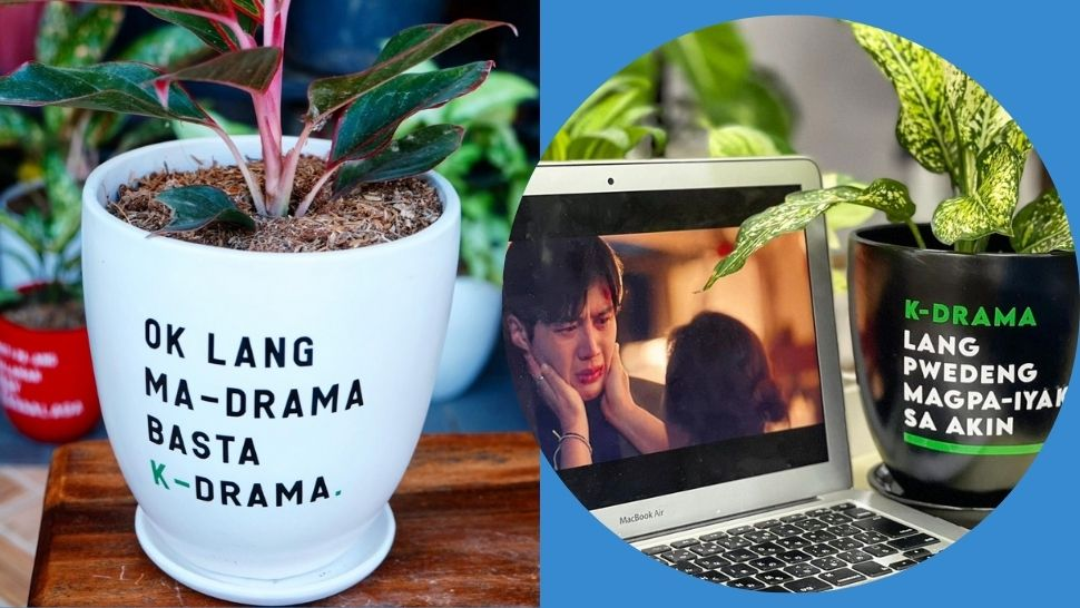Make Planting More Fun With These K-Drama-Inspired Pots