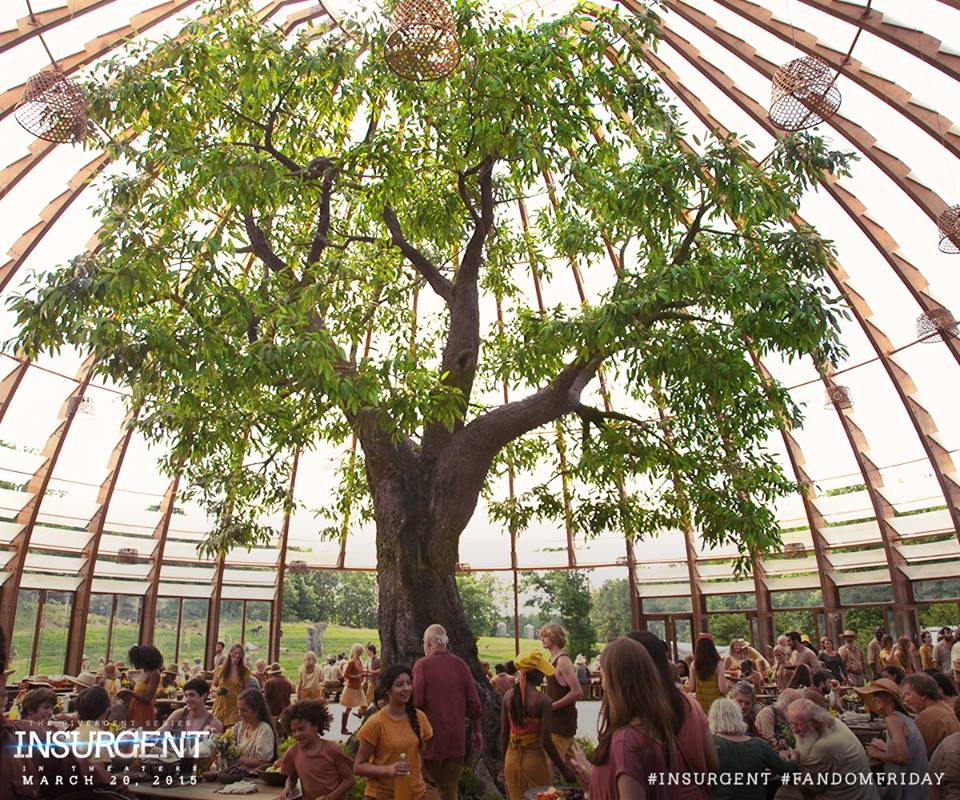 Caption This: The Latest Still From Insurgent