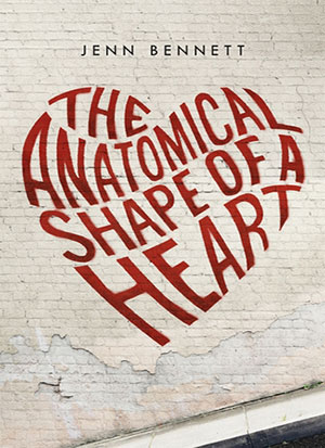 the anatomical shaope of a hear