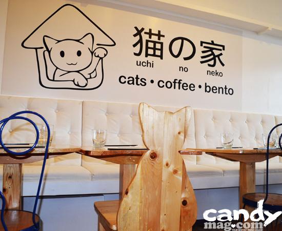 Uchi No Neko—The Cat House Café 1