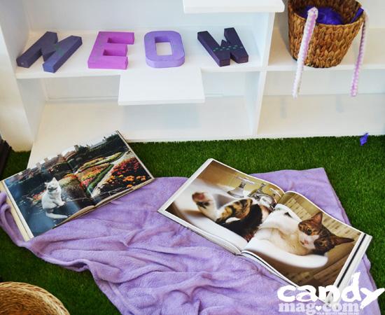 Uchi No Neko—The Cat House Café 4