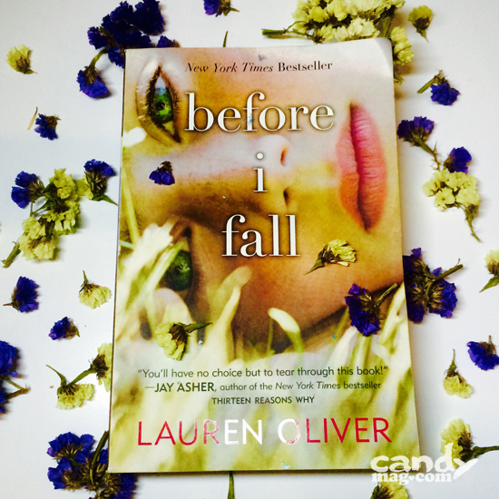 Before I Fall book