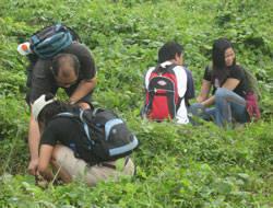 Travel and Volunteer