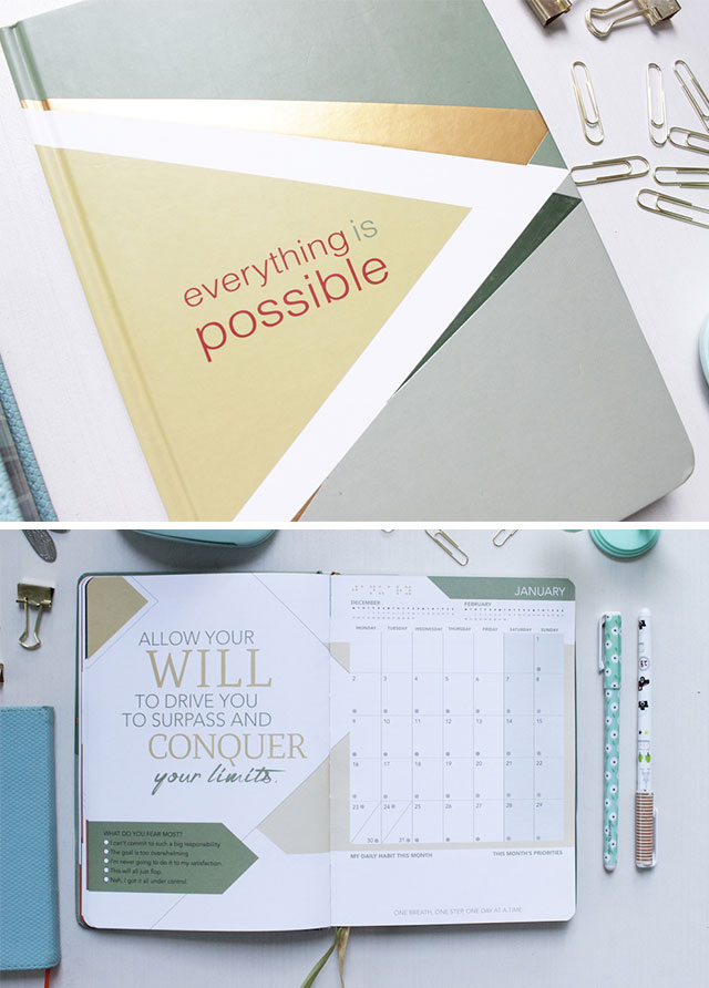 2017 planners for every cosmo girl cosmo priority list life achievements and positive reinforcements where to buy national bookstore powerbooks fully booked and online at ilovebdj gumiabroncs Choice Image