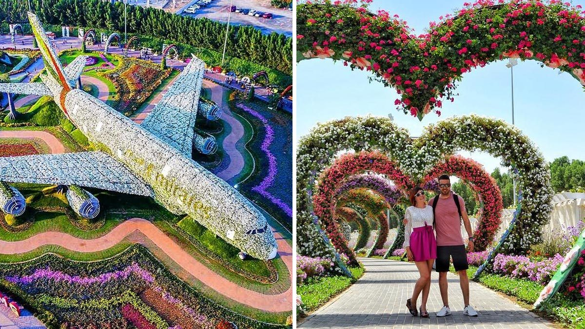 Dubai's Miracle Garden, The World's Biggest Flower Garden - photo#37