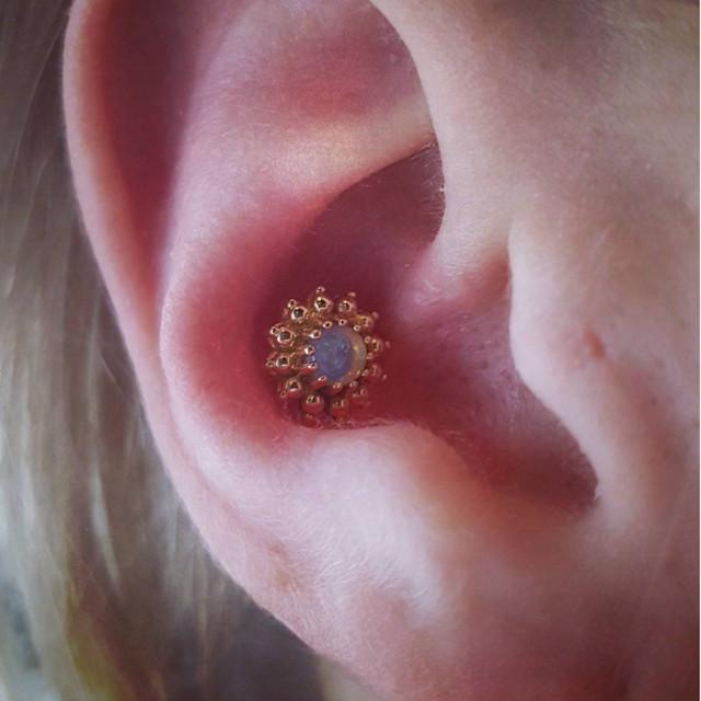 Types of ear piercings
