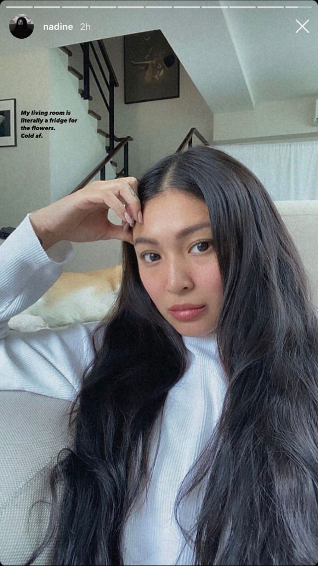 Nadine Lustre Sells Flower Arrangements And Plants