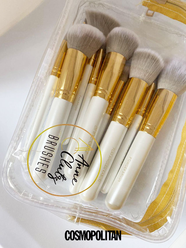 Ultimate Beginner Brush Set by Anne Clutz Version 2.0: Jelly Pouch