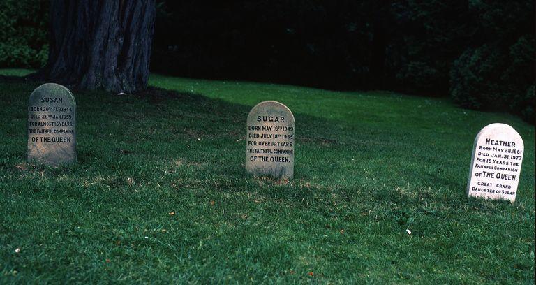 Corgi graveyard of Queen Elizabeth II