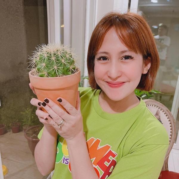 Jolina Magdangal's Plant Corner - golden barrel cactus