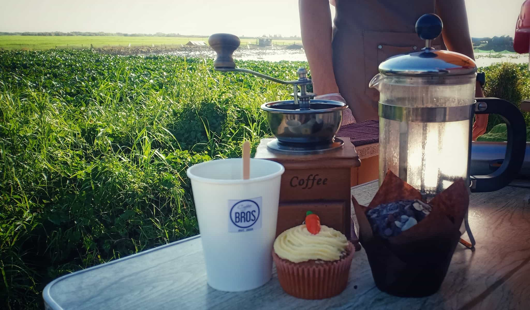 coffee stand: cup of coffee with rice fields in the background