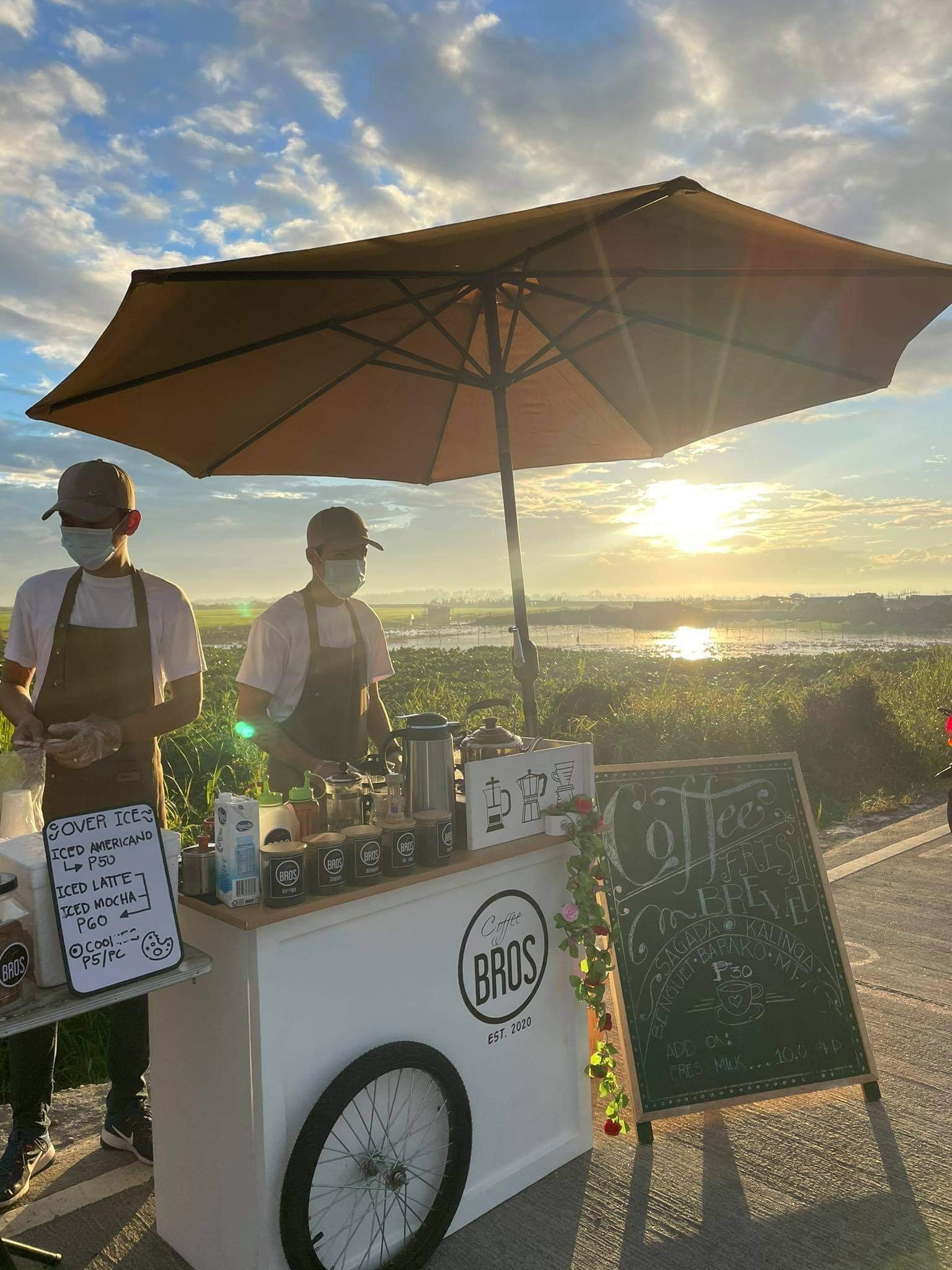 coffee stand: cup of coffee with rice fields in the background, sunset