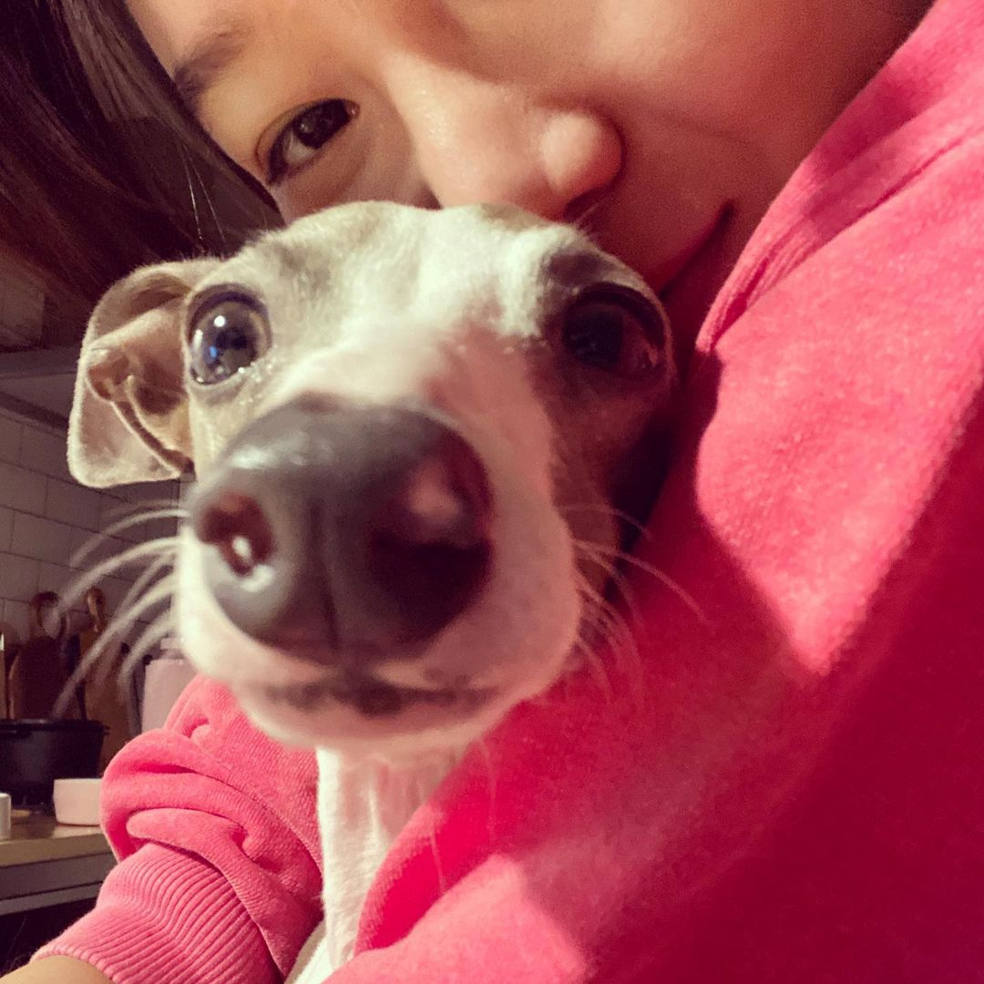 Gong Hyo Jin's Mimi and Toto