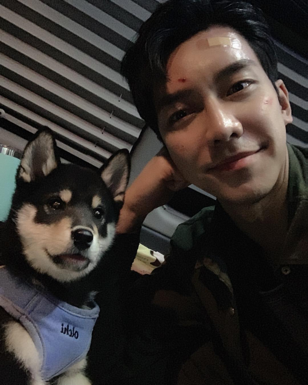 Lee Seung Gi's Perro