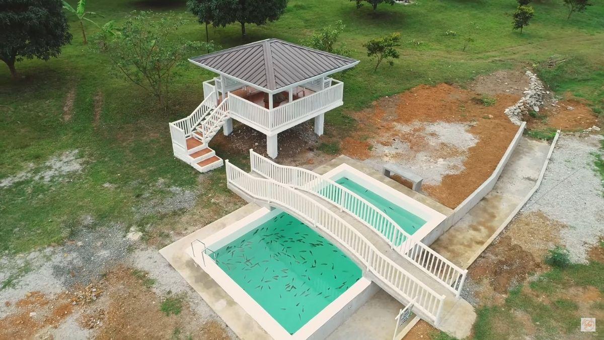 Bea Alonzo's farm in Zambales: treehouse