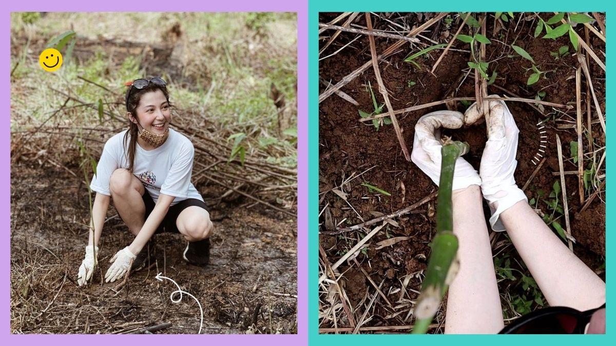 Donnalyn Bartolome plants bamboo in Rizal
