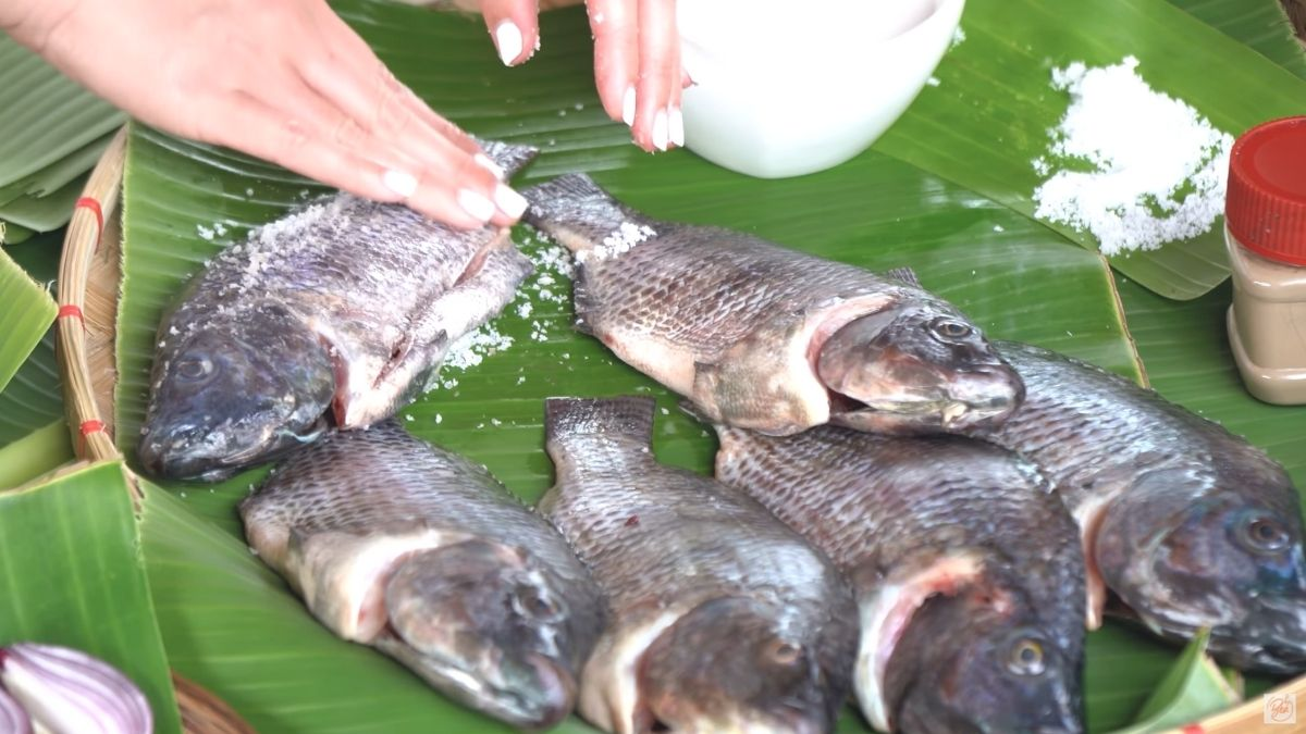 sinaing na tilapia sa gata na may kamias recipe: rub the fish with salt