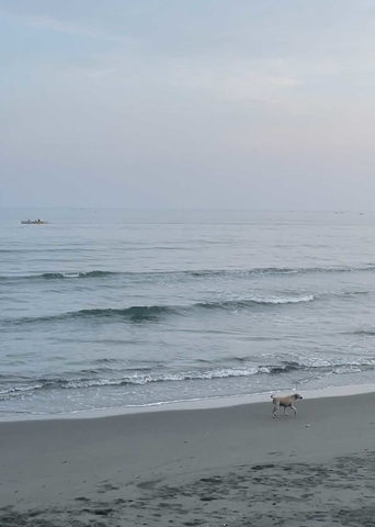 I moved out of Manila and to the province (Pangasinan): Lingayen beach