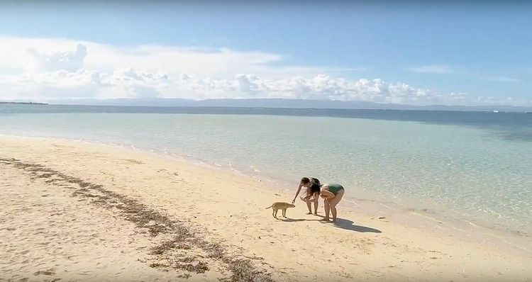 Career shift - Pinay in Pandanon Island, Cebu