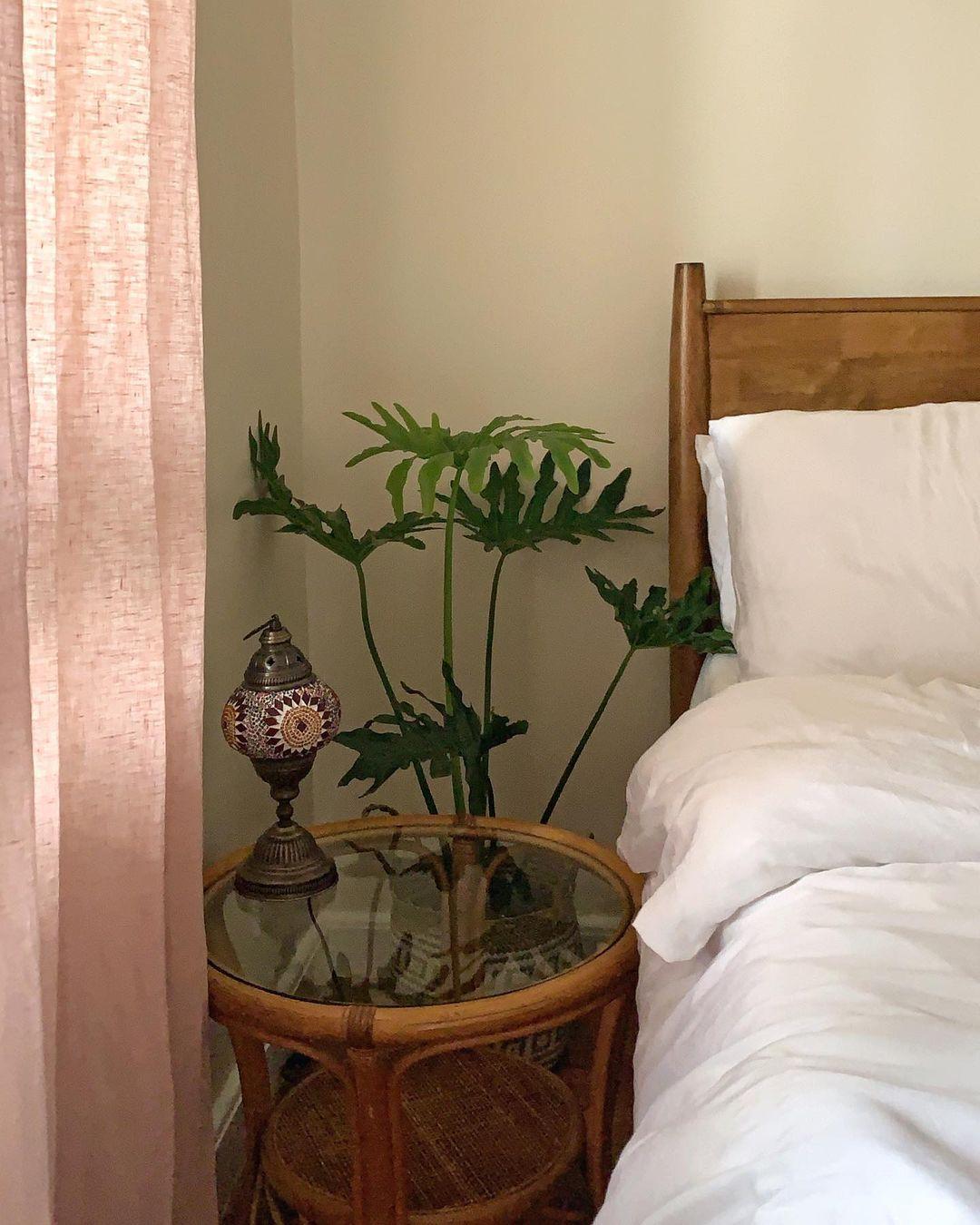 boho-inspired home makeover: plants