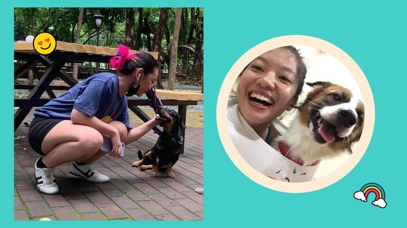 heartwarming pet stories