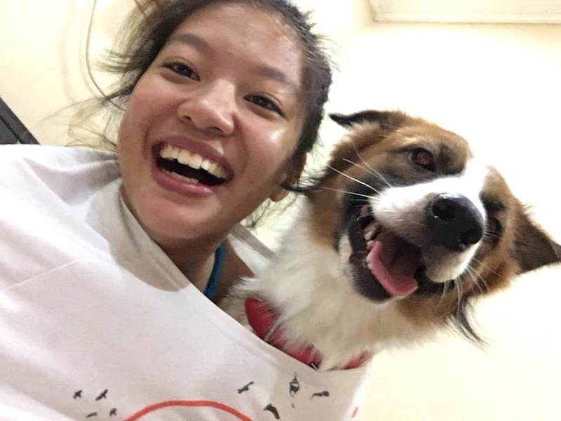 heartwarming personal stories about pets