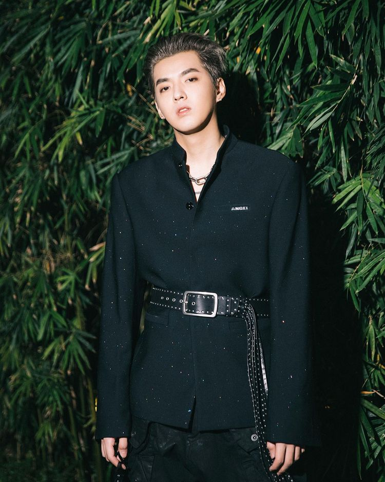 Former EXO Member Kris Wu Is Caught In Sexual Assault Allegations