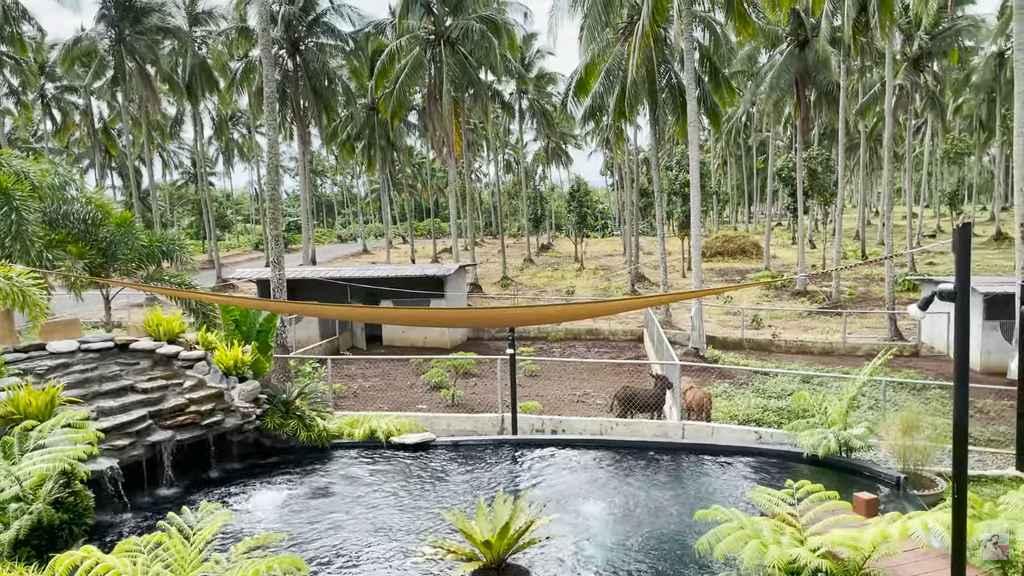 Vilma Santos' farm in Batangas