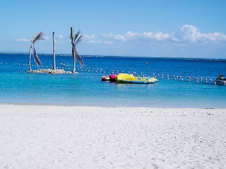 wdd_hiltoncebunew_beach.jpg