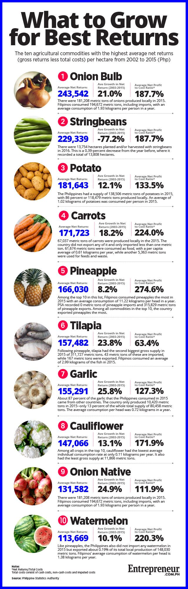 What are the Most Profitable Farm Products to Grow in the Philippines?