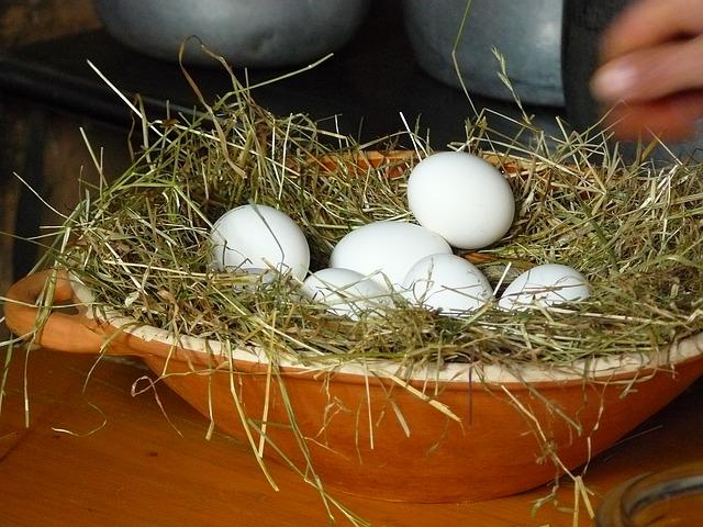egg_351814_640.jpg