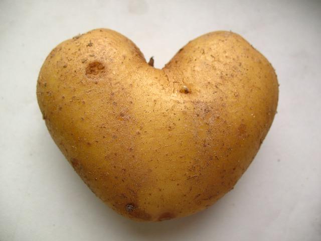 potato_165648_640.jpg