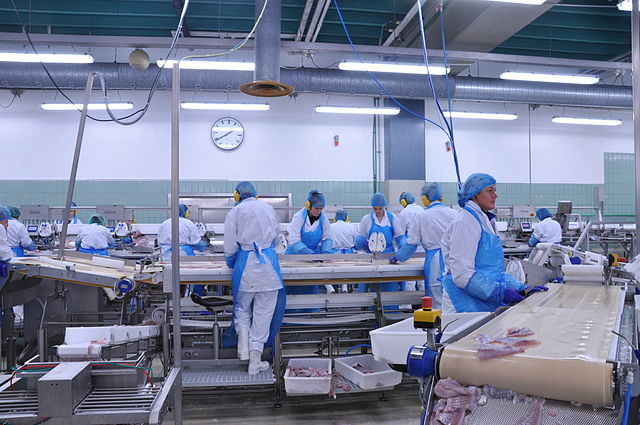 FDA's guidelines for 'Current Good Manufacturing Practices'