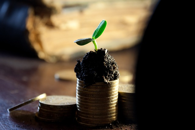 3 ways to grow your money in 2015