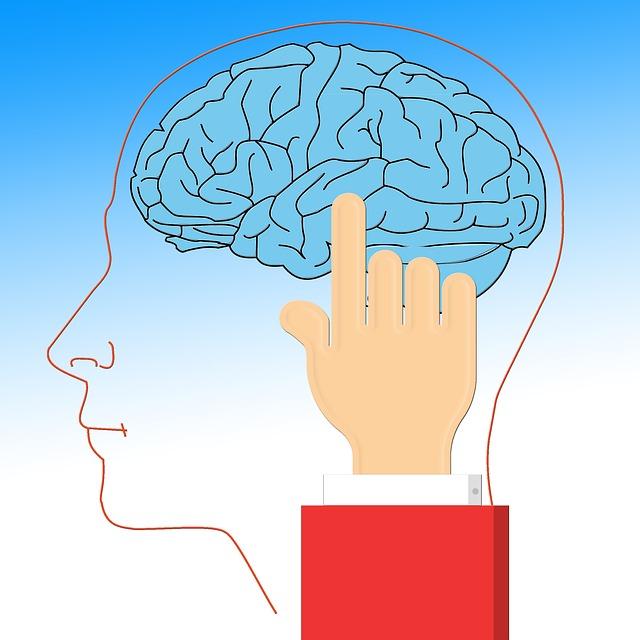 brain_628736_640.jpg