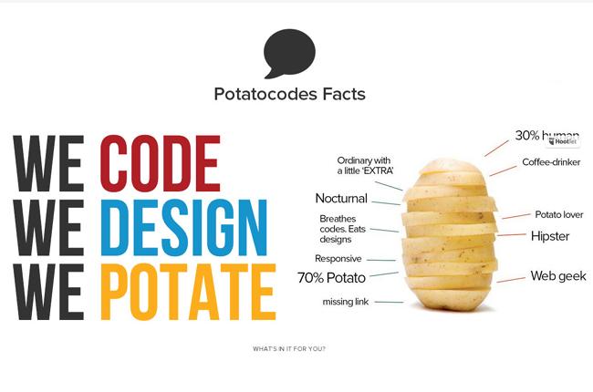 potatocodes1.jpg