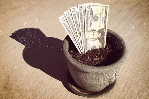 growing_your_money.jpg