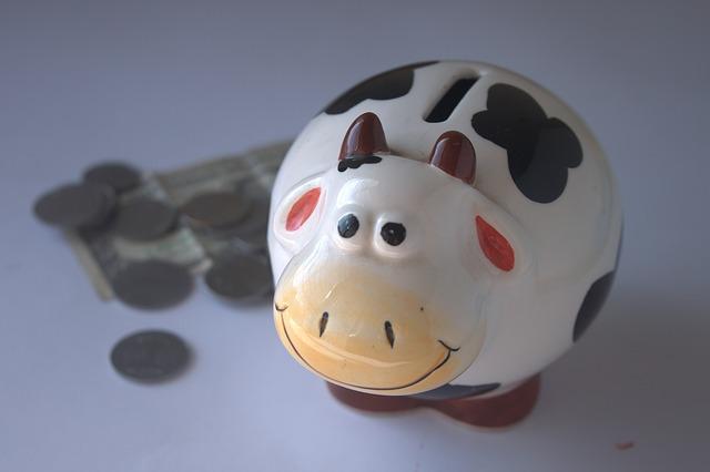 piggy_bank_390528_640.jpg