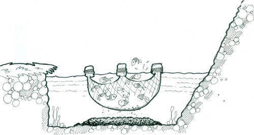 illustration of fish cage
