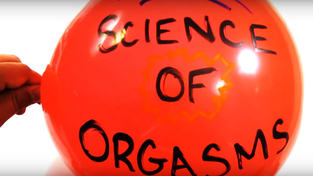 This Video About The Science Of Orgasms Is How Sex Ed Should Be