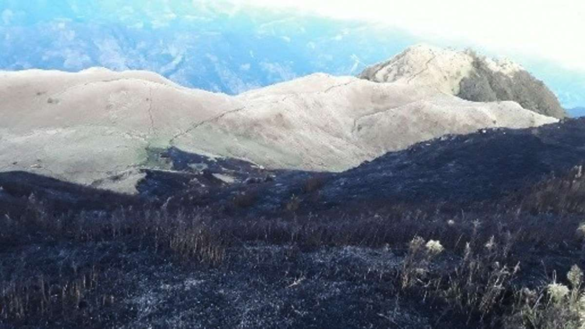Mt. Pulag's 'Sea Of Clouds' Closed After Forest Fire